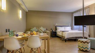 Suite Executive con 1 cama doble y 1 sofá cama